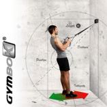 Gymbox_trainingskonzept